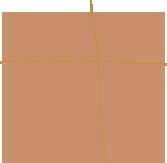 comp6-home-icon4